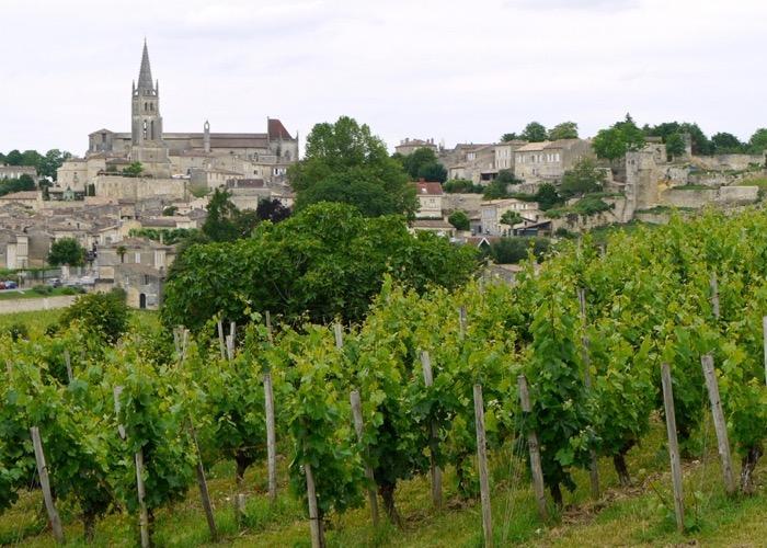 Balade et dégustation dans un domaine viticole lors d'un séjour oenologique pour votre séminaire à Bordeaux