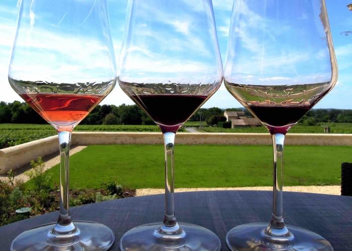 Dégustation de vin dans un domaine lors d'un séminaire à Bordeaux