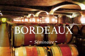 Visite de chais et Dégustation dans un domaine viticole lors d'un séjour oenologique pour votre séminaire à Bordeaux