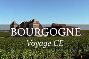 Organisez votre voyage CE en Bourgogne et découvrez la gastronomie et les vins de la région