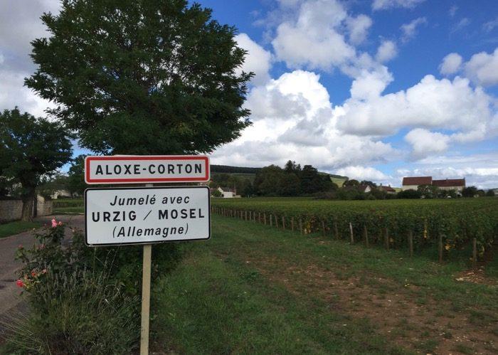 Visite de vignoble Aloxe-Corton lors de votre voyage en comité d'entreprise en Bourgogne
