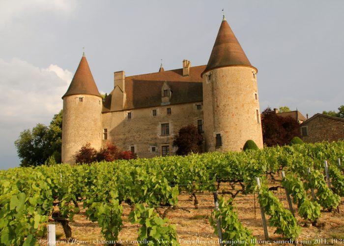 Visitez un vignoble du Beaujolais lors de votre séminaire dans la région