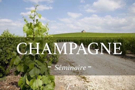 Visite de vignoble lors d'un séminaire en champagne