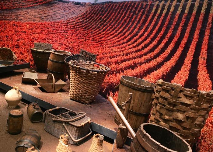 Visitez le musée mimbre lors d'un séminaire dans la Rioja en Espagne