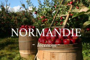 visite de production de cidre et culture de pomme lors d'une incentive en Normandie autour de la gastronomie et du vin