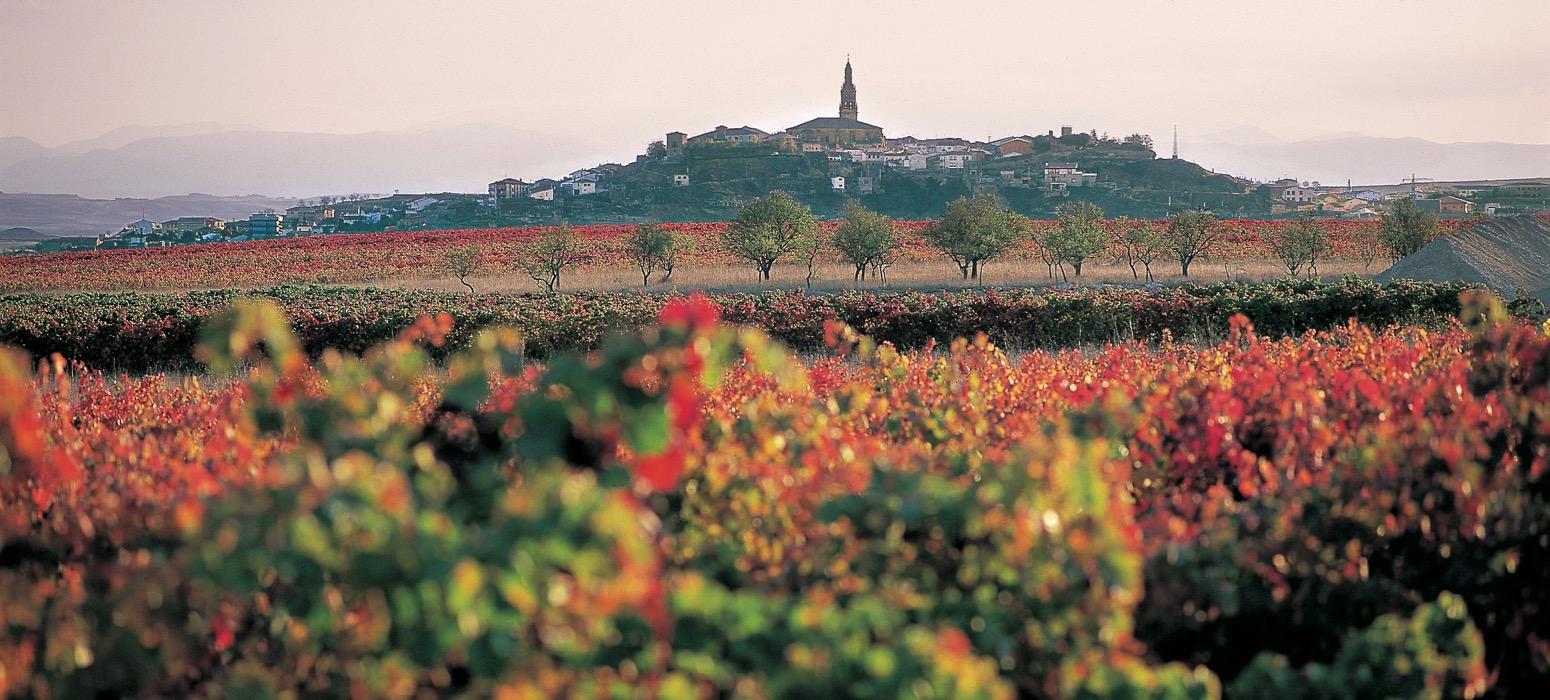 Organisez votre séminaire dans la Rioja en Espagne et découvrez la région à travers ses vins et sa gastronomie