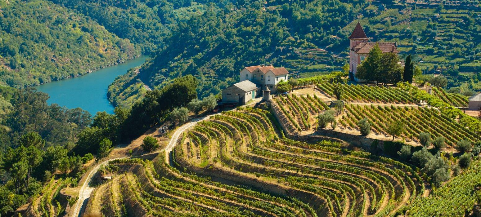 Douro ; fleuve ; vignoble ; vin ; vigne ; vue ; rivière ; découverte ; séminaire