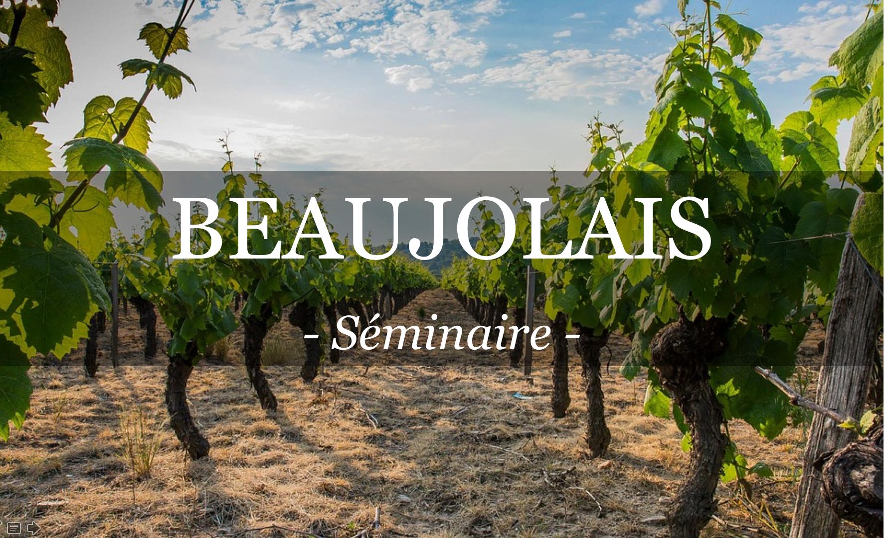 Partez dans le Beaujolais pour votre séminaire