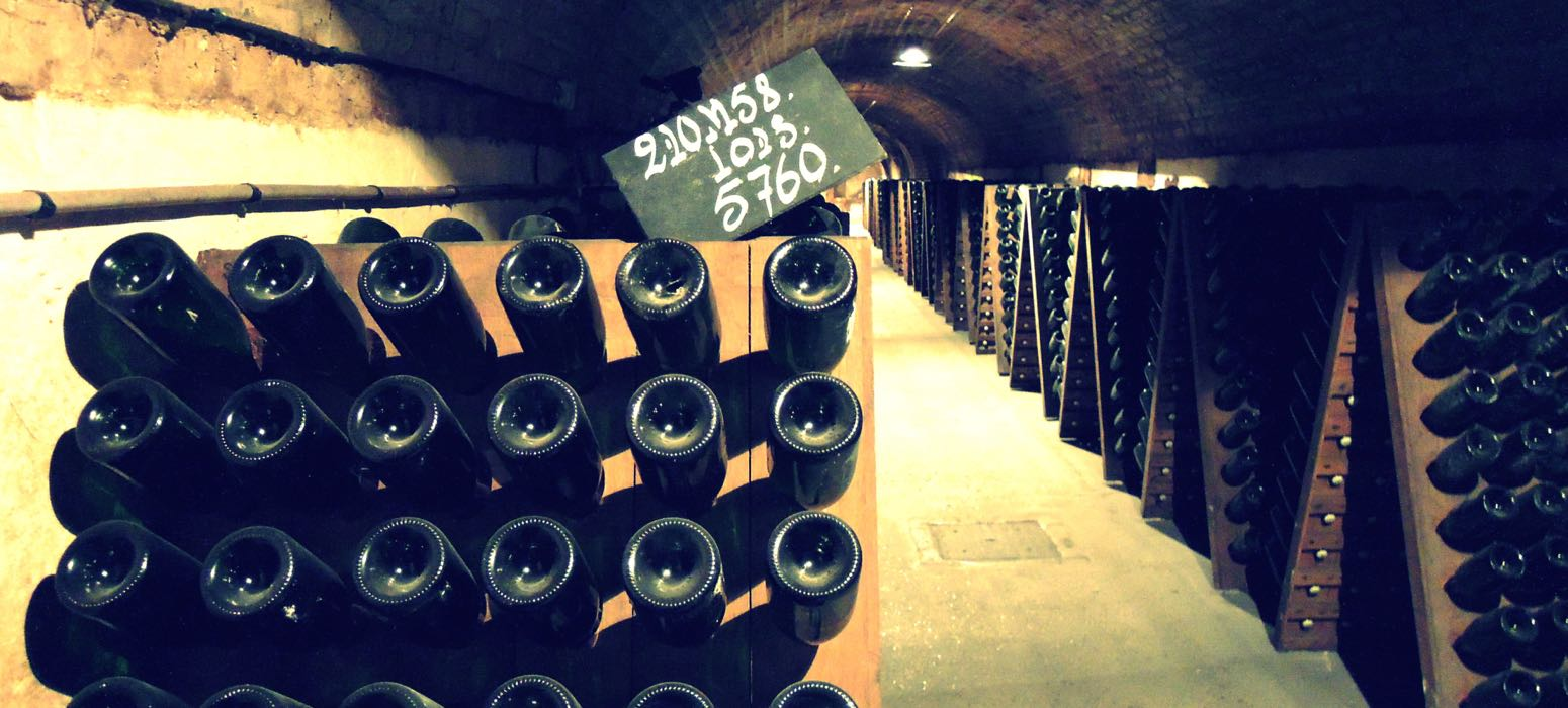 dégustation, champagne, cave, cellar, découverte, région, wine tour, tour