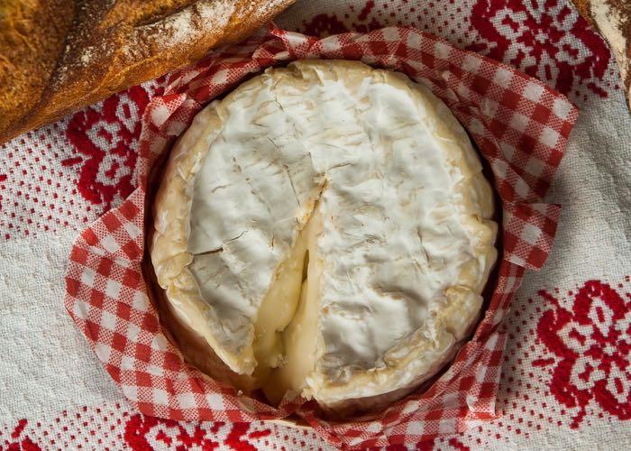 Dégustation de fromage et Camembert lors d'une incentive en Normandie autour de la gastronomie et du vin
