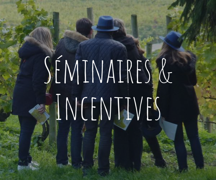 Séminaires et incentives, activités proposées par Wine Passport