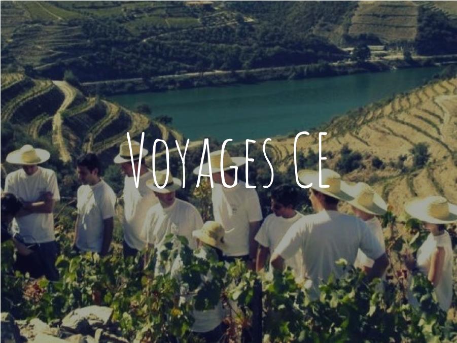 Voyage de comité d'entreprise évènements Wine Passport